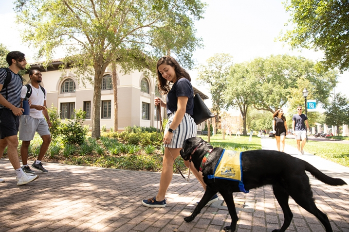 this photo illustrates how service dogs trained by Canine Companions for Independence help people with disabilities